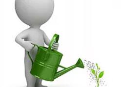 location de plantes verte permet d'agailler et d'embellir vos locaux