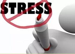 la location de plantes vertes pour vos bureaux permet de réduire le stress de vos salariés